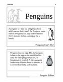 Penguin Lesson Plan/ Flip Book