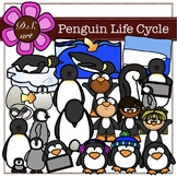 Penguin Life Cycle Digital Clipart (color and black&white)