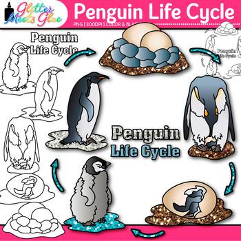 Penguin Life Cycle Clip Art Habitat Adaption Graphics Glitter Meets Glue
