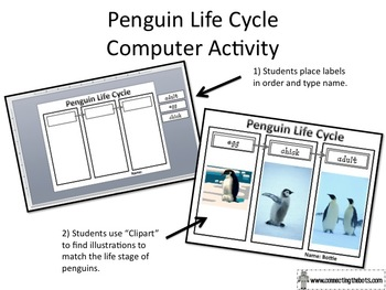 Penguin Life Cycle Computer Activity