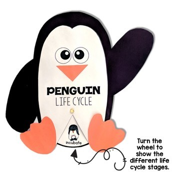 Penguin Life Cycle Craft