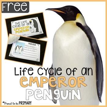 Penguin Life Cycle Mini-Book