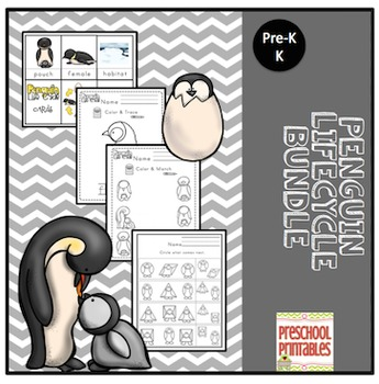 Penguin Life Cycle Toddler Bundle
