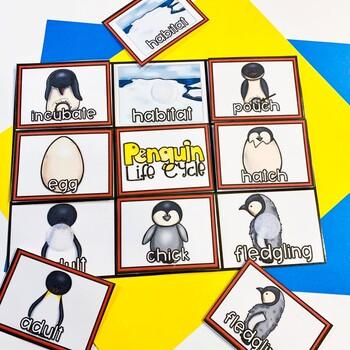 Penguin Life Cycle Unit