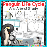 Penguin Science Life Cycle and Penguin Activities