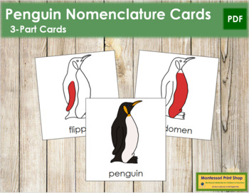Penguin Nomenclature Cards (Red)