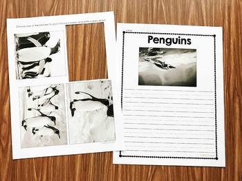 Penguin Nonfiction Book