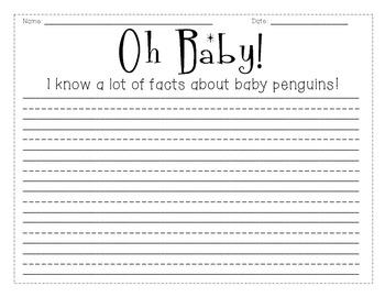 Penguin Pack