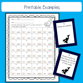 Penguin, Polar Bear, and Whale Fact and Opinion Task Card Bundle