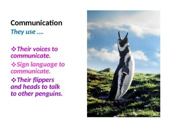 Penguin Power Point