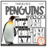 Penguin Real Photo Cards