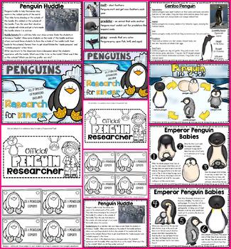 Penguin Research for Kinder