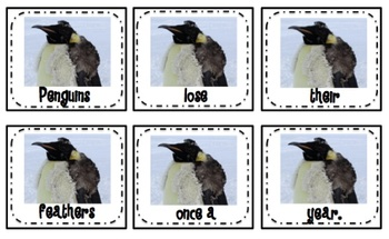Penguin Sentence Order