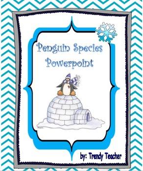 Penguin Specie Powerpoint