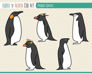 Penguin Species Clip Art - color and outlines