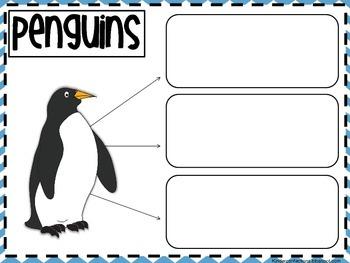 Penguin Thematic Unit