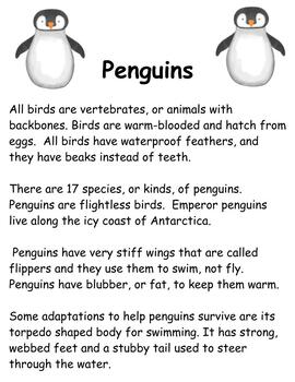 Penguin Unit- Shared reading and Interactive reading