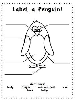 Penguin Unit of Study