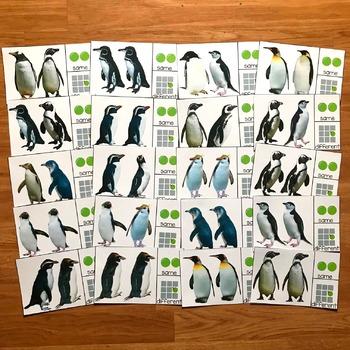 Penguin Unit (w/Real Photos)