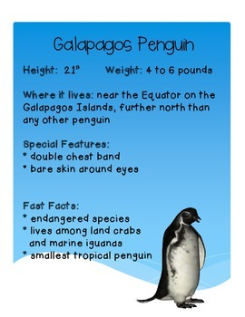 Penguin Writing Pack