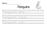 Penguin Writing Template - Differentiated
