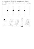 Penguin life cycle (Emperor)