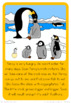 Penguin life cycle  book