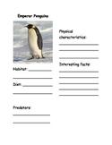 Penguin reports