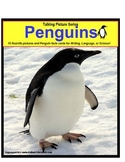 Penguins Picture Nonfiction Fact Cards