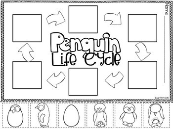 Penguins for the Primary Classroom