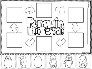 Penguins for the Primary Classroom   Penguins Unit   Penguins Kindergarten