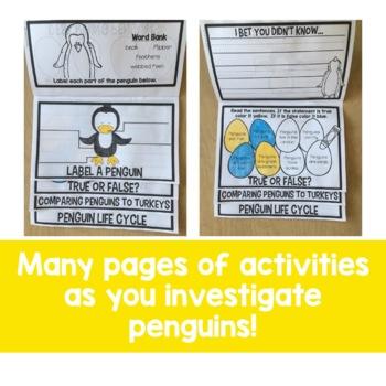 Penguins Flip Up Book