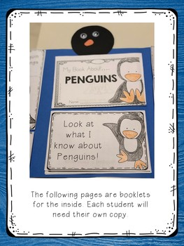 Penguins Lapbook