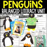 Penguins A Non-fiction Unit for Primary Teachers