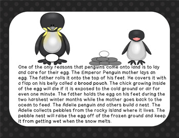 Penguins: A Nonfiction Text, Activities, and Assessment