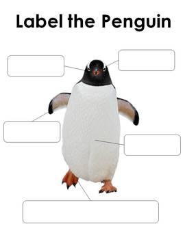Penguins: A complete nonfiction unit of Science, Math, Language Arts activities
