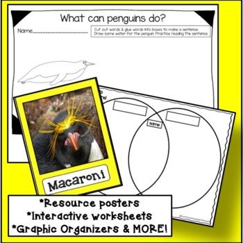 Penguins: All About Penguins Non-fiction Unit