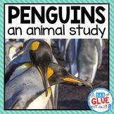Penguins: An Animal Study