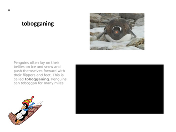 Penguins Balanced Reading PowerPoint Presentation