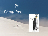 Penguins Close Reading PowerPoint Presentation