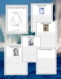 PENGUINS - Book with Writing Starters & Booklet in Spanish - Text Features