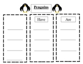 Penguins- Can, Have, Are- Graphic Organizer