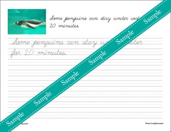 Penguins Unit - Copywork - Cursive - Handwriting