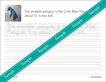 Penguins Unit - Copywork - Cursive - Handwriting