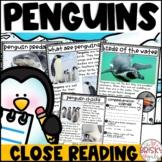Penguins First Grade (Penguins Kindergarten)