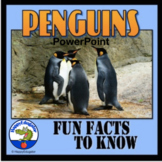 Penguins PowerPoint Fun Facts Informational Text Distance Learning