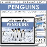 Penguins   Google Slides   Distance Learning Activities