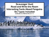 Reading-Penguins-Interesting facts About Six Different Types-Grades 4-7