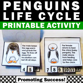 Penguins Life Cycle Foldable Science Interactive Notebook