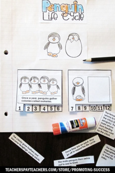 Penguin Life Cycle Sequencing, Science Interactive Notebook Craftivity